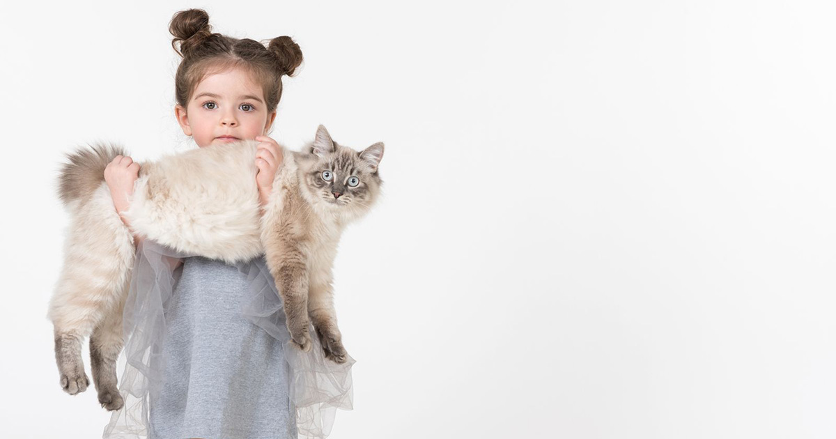Catgratulations: special collection of frisky graphics for International Cat Day: Girl holding a cat